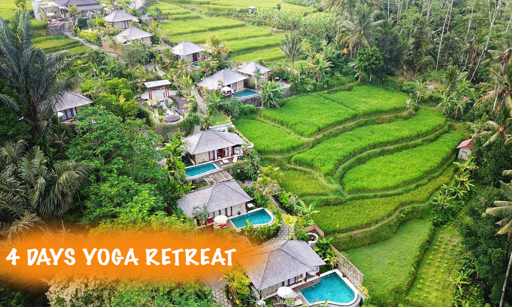 bali yoga school - yoga retreat in bali
