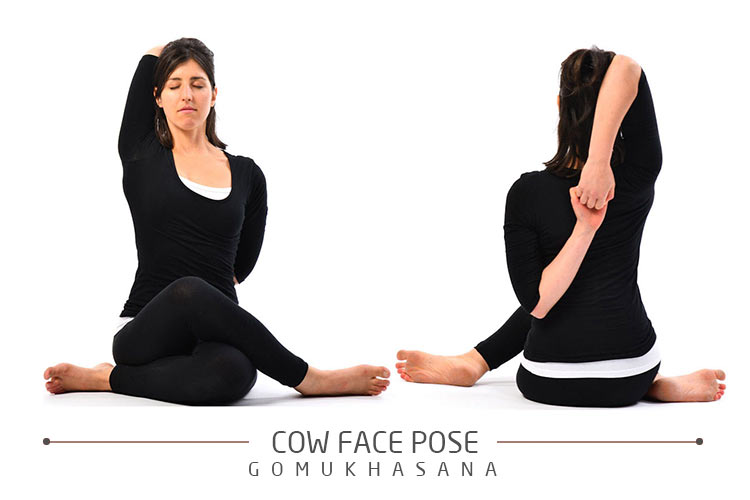 Gomukhasana (Cow's Face pose)