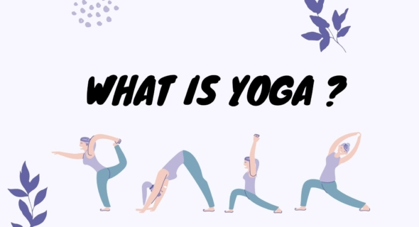 what is yoga by himalayan yoga association